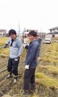 稲刈り2016.jpg